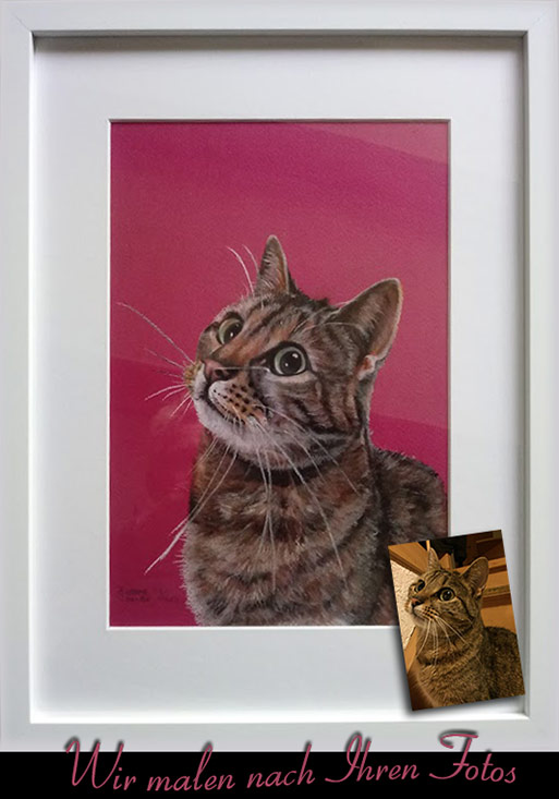 meine katze malen lassen katzen gem lde nach foto katze zeichnen lassen katzen portraits. Black Bedroom Furniture Sets. Home Design Ideas